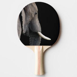 Elephant wild zoo animal photo ping pong paddle