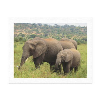 Elephant with Baby Canvas Print