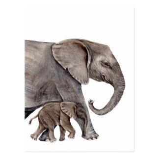 Elephant with Baby Elephant Postcard