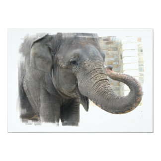 Elephant with Curled Trunk Invitation
