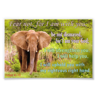 Elephant with Isaiah 41:10 Photo Print