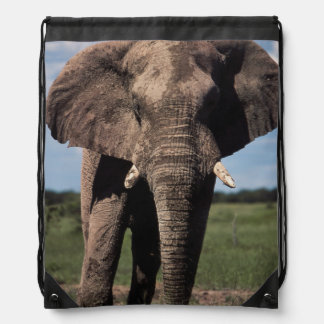 Elephant young male drawstring bag