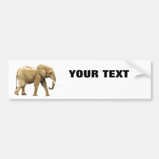 "Elephant Your Text ""Folio Extra Bold"" on White Bumper Sticker"
