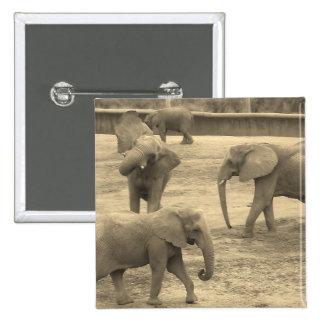 Elephants - by Fern Savannah 2 Inch Square Button