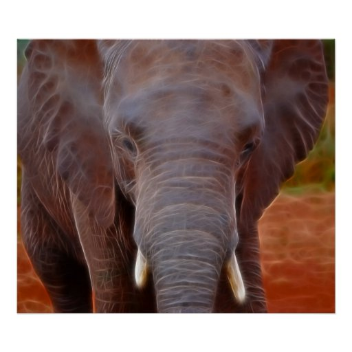 Elephants charge posters