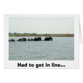 Elephants Crossing Chobe River Card