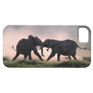 Elephants. iPhone 5 Case
