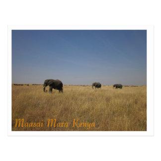 Elephants of the Maasai Mara Postcard