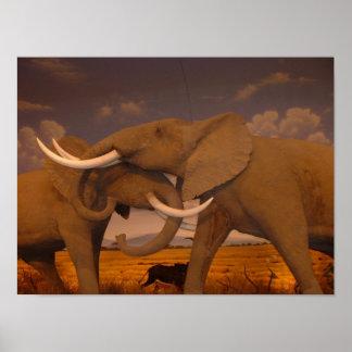 Elephants! poster