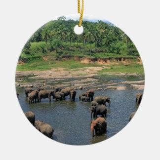 Elephants Sri Lanka Ceramic Ornament