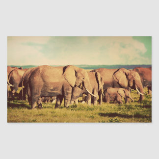 Elephants stickers