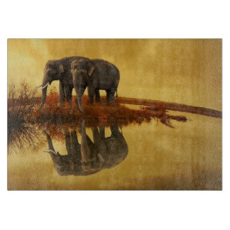 Elephants Sunset Boards