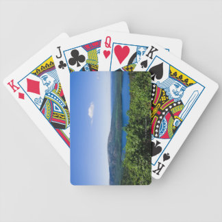 Elevated View of Eagle Lake Poker Deck