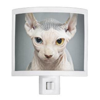 Elf Sphinx Cat Photograph Nite Light