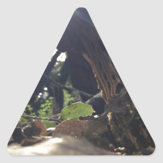 Elfin Saddle Mushroom Triangle Sticker