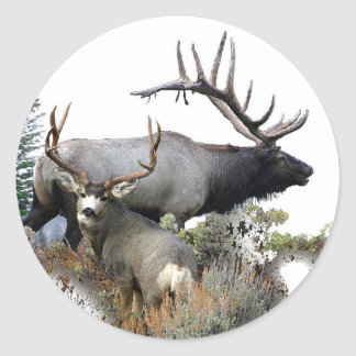 Elk and mule deer classic round sticker
