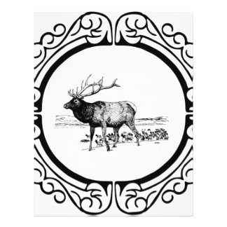 elk art in frame letterhead