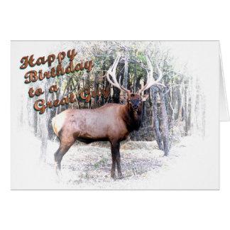 Elk birthday-customize card