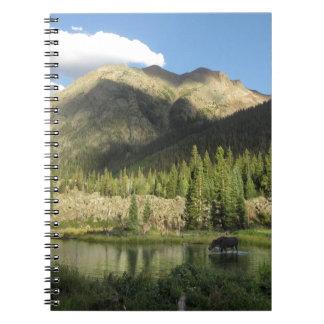 Elk Creek Moose - Weminuche Wilderness - Colorado Notebooks