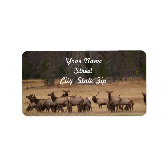 Elk Herd  Address Sticker