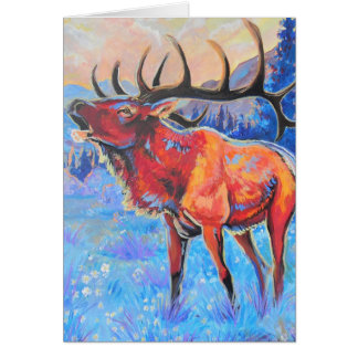Elk holiday cards