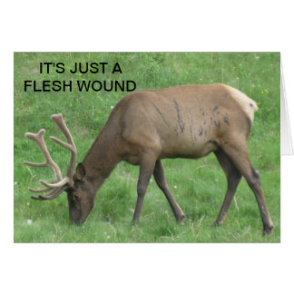 Elk Just A Flesh Wound Get Well Card