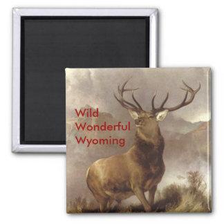 """ELK MAGNETS MOUNTAIN """"WILD WONDERFUL WYOMING"""""""