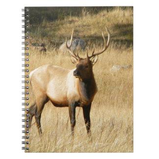 Elk Note Books