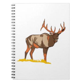 Elk Notebook