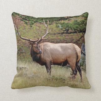 Elk on a Pillow