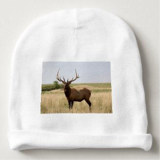 Elk on Canadian Prairies Baby Beanie