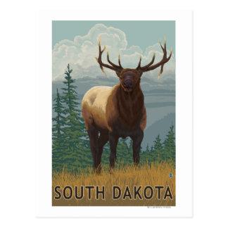 Elk SceneSouth Dakota Postcard