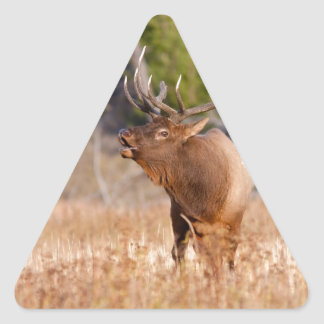 Elk Triangle Sticker