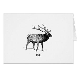 Elk - Wapiti (line art) Card