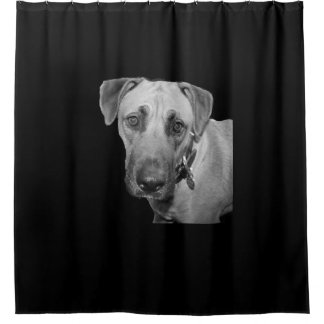Elmo Dog Face Shower Curtain