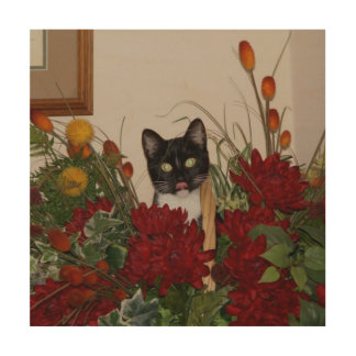 Elvira the Cat, Wood Wall Art Print.