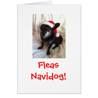 Elvis Christmas Card