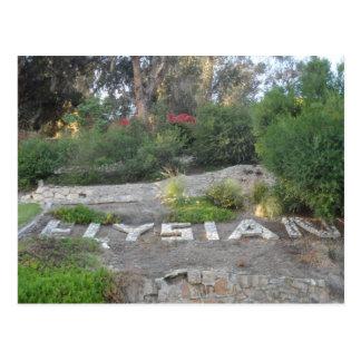 Elysian Park, Los Angeles Postcard