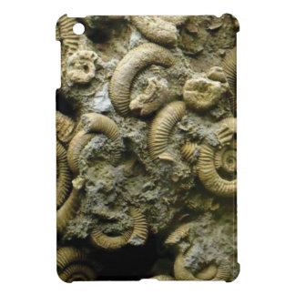 embedded snails fossils iPad mini case
