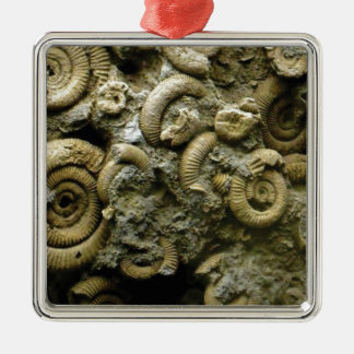embedded snails fossils metal ornament