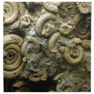 embedded snails fossils napkin