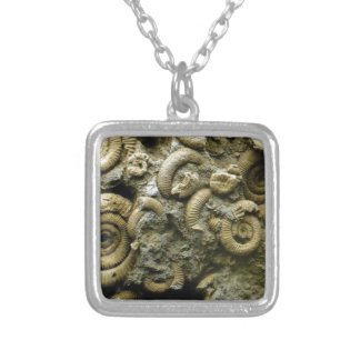 embedded snails fossils silver plated necklace