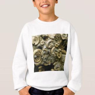 embedded snails fossils sweatshirt