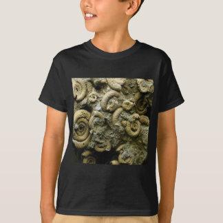embedded snails fossils T-Shirt