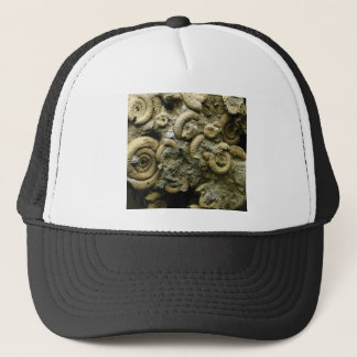 embedded snails fossils trucker hat