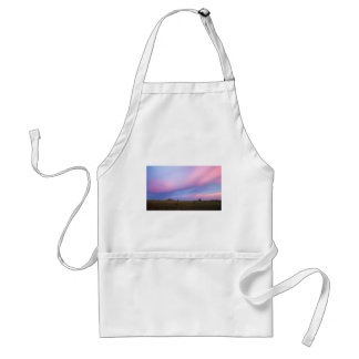 Embers in the Sky over Florida Everglades Standard Apron