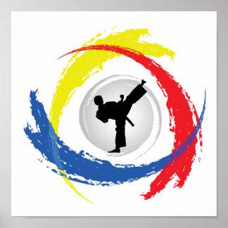 Emblème tricolore de karaté poster