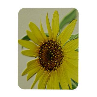Embossed Sunflower Magnet