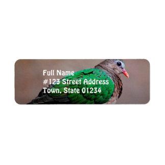 Emerald Dove Return Address Label