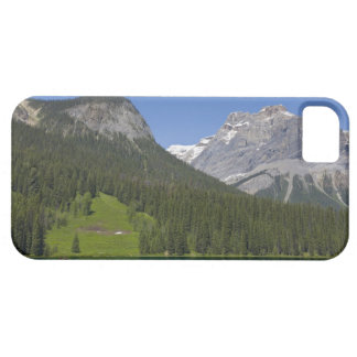 Emerald Lake, Canadian Rockies, British iPhone 5 Cases
